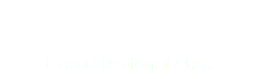 Grand National Stats